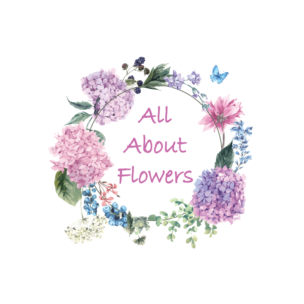 About - All About Flowers Online Ordering