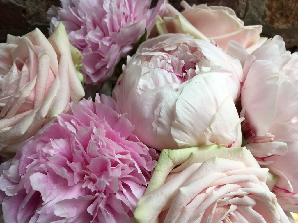 Checkout, Delivery - All About Flowers Online Ordering